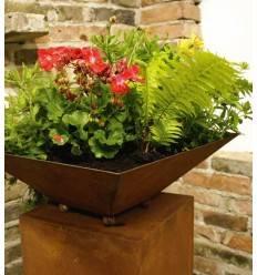 rostige pflanzgef e rostsschalen gro e auswahl an rostdeko schalen und kronen metallmichl. Black Bedroom Furniture Sets. Home Design Ideas