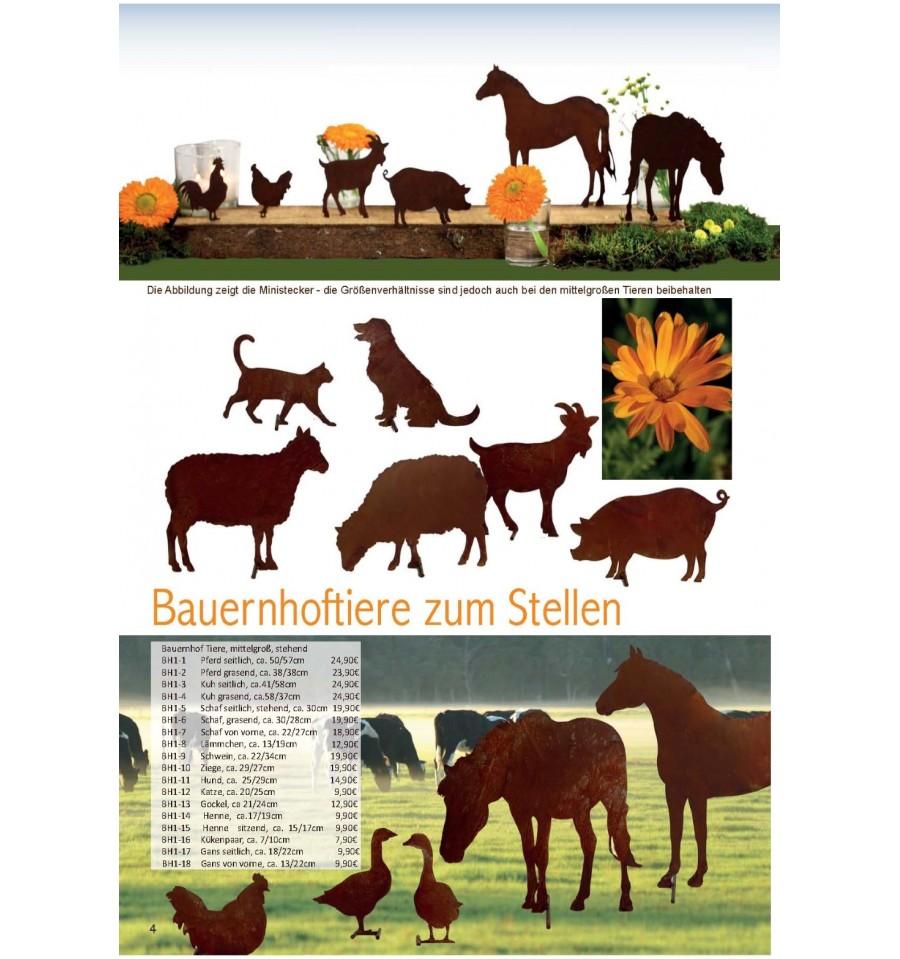gratis kataloge bestellen schweiz