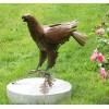 Adler Figur Garten