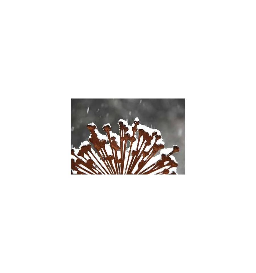 Edelrost Blumenstecker Allium Gartenstecker Gartendeko kaufen