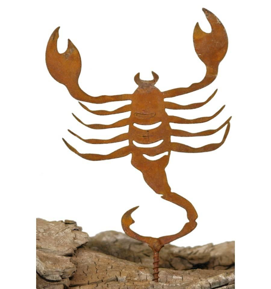passen skorpion und krebs zusammen