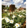 Edelrost Deko Rose Gartenstecker, 35 cm hoch Metall Deko für den Garten