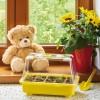 Biene Maya Gewächshaus für Kinder - Länge 29