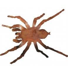 Edelrost Spinne L 13cm, B 10cm