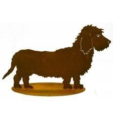 Edelrost Rauhaardackel Bastian - Rost Hund