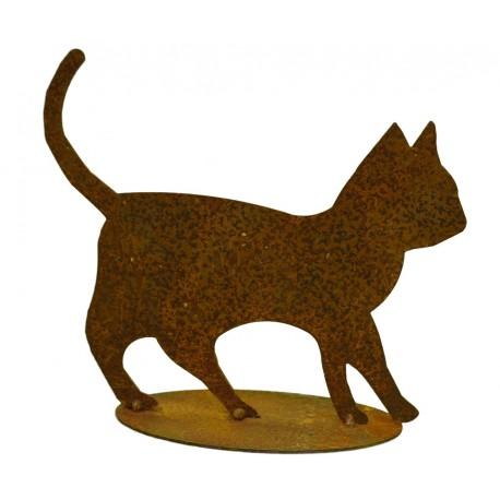 Edelrost-Katzenbaby Tom